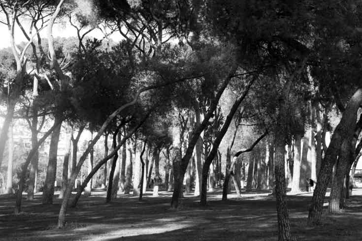parchi-giardini-roma-aleph-04