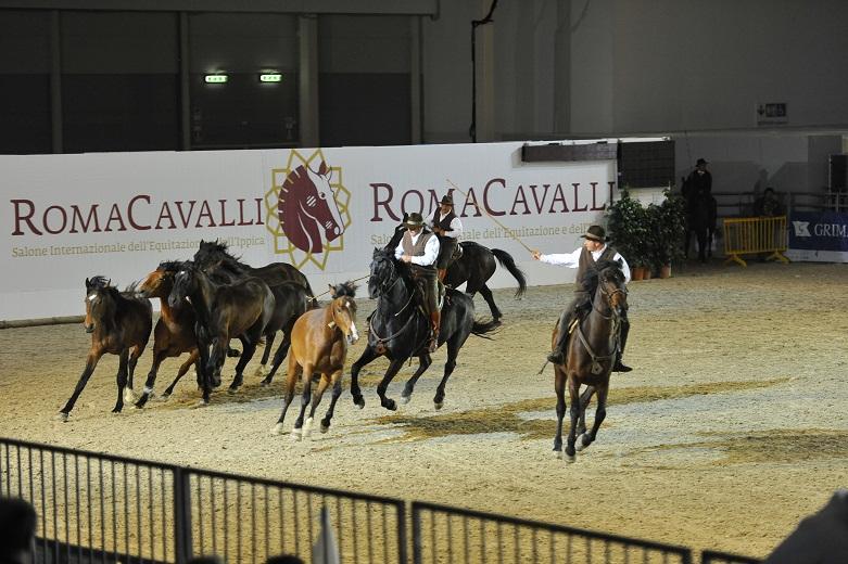 roma-cavalli-2013(2)