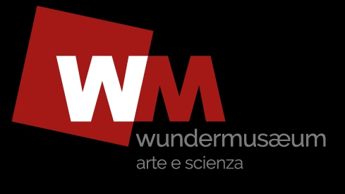 wundermuseum
